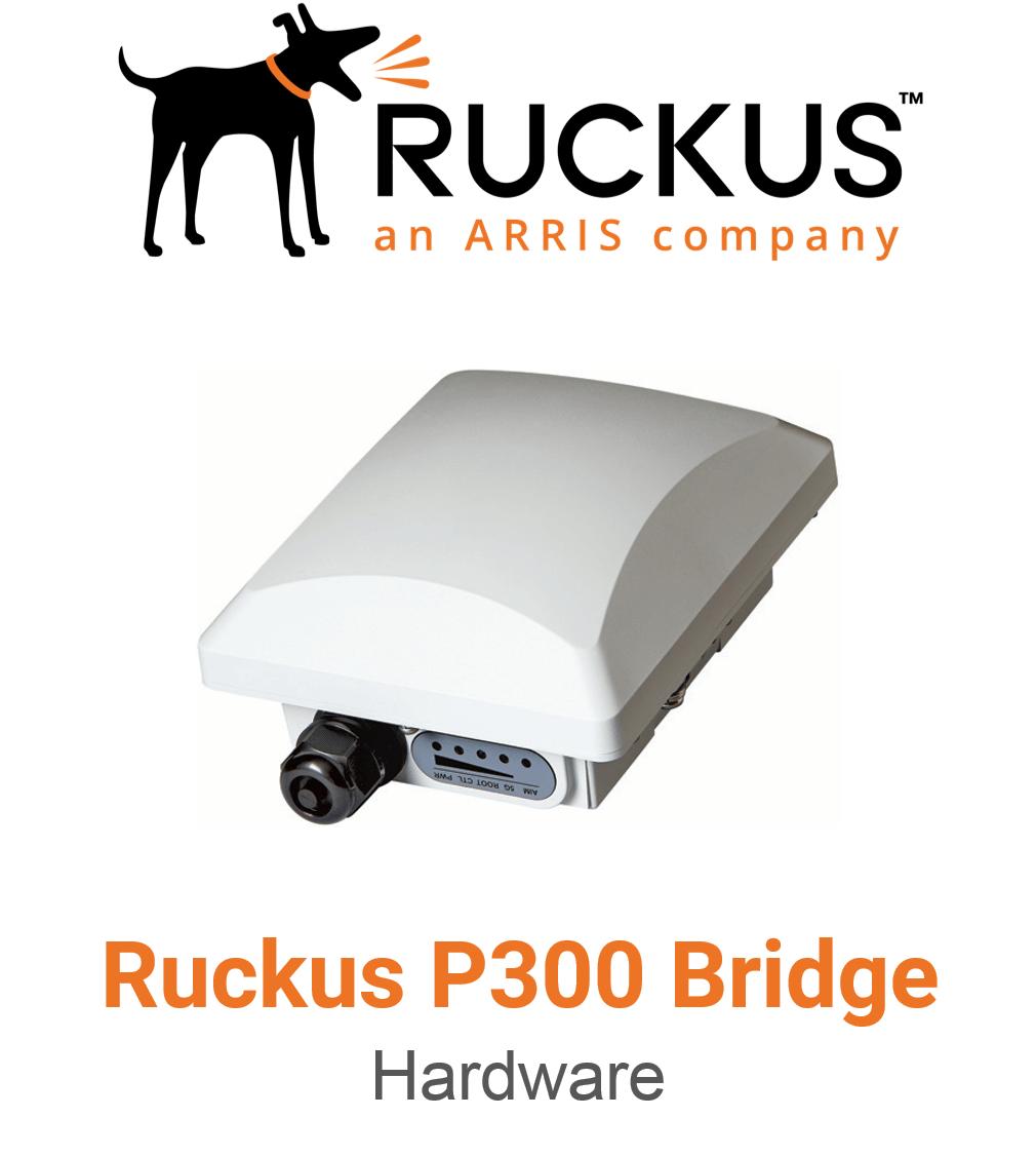 Ruckus P300 Spezial Access Point