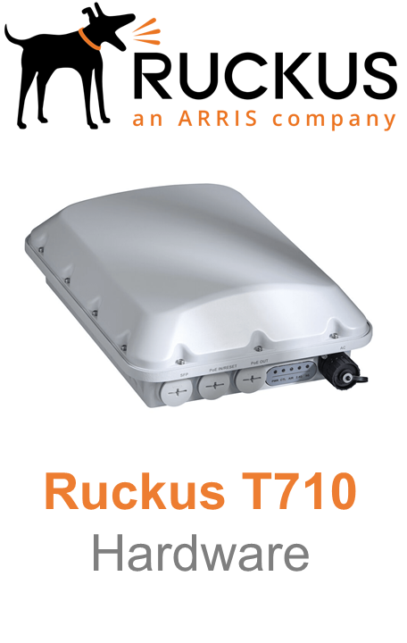 Ruckus T710 Outdoor Access Point